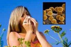 Az allergiáról érthetően